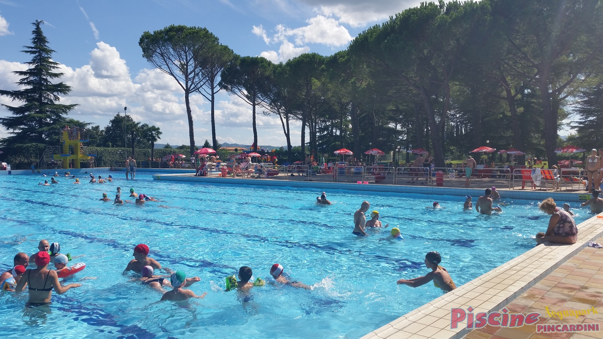 Attrazioni acquapark pincardini - Dimensioni piscina olimpionica ...